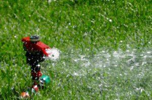 Instalaciones de riego en Madrid