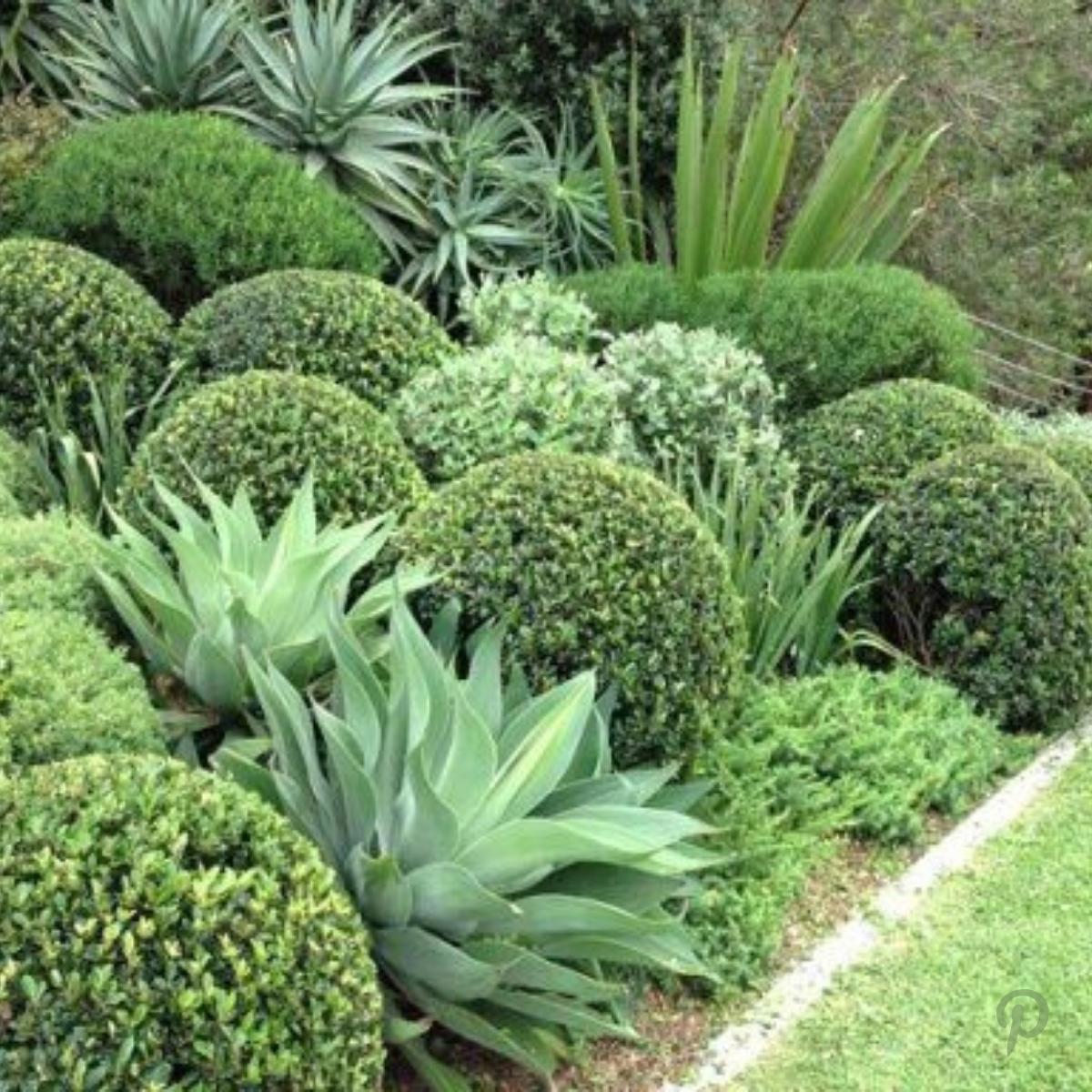 Tecgarden Claves Diseño de Jardin