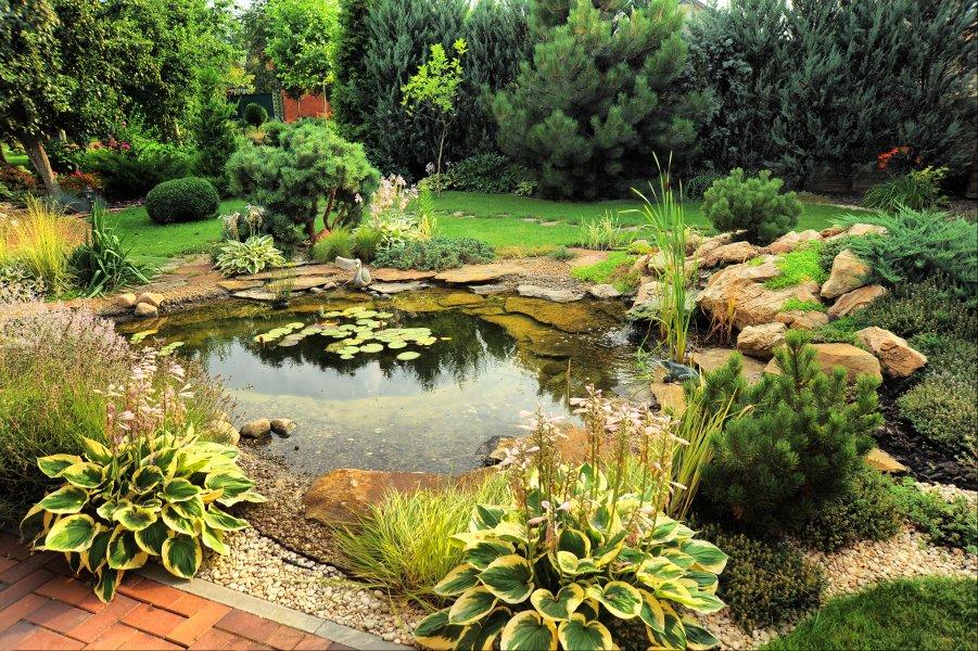 construcción de estanque en Madrid