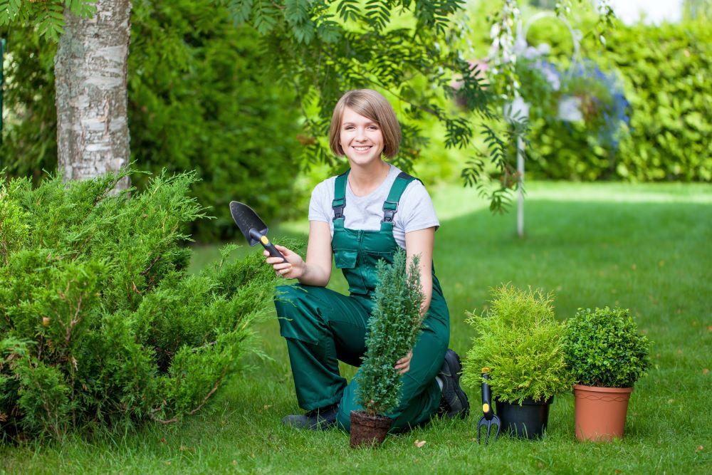 empresas de mantenimiento de jardines en Madrid
