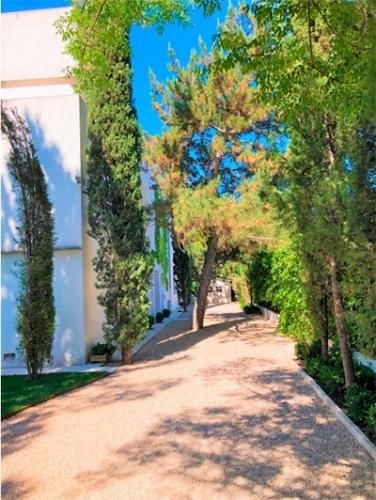arreglo jardin vivienda Aravaca