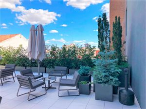 plantas en terrazas Madrid