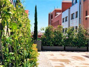 decoracion terrazas Madrid
